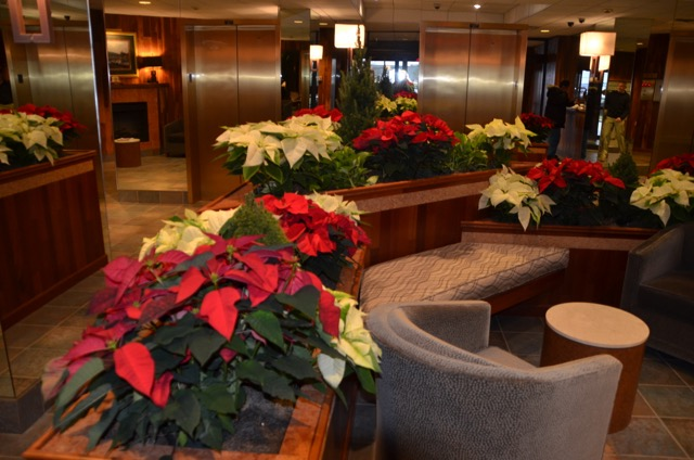 ChannelClubPoinsettias